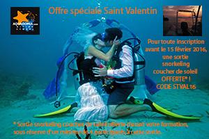 Offre saint Valentin ...