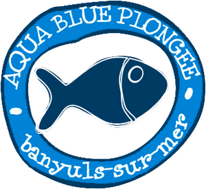 1089_aquablue_300x300.png