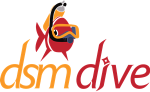 2312_new_logo_of_dsm_dive.png
