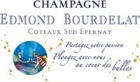 3518_logo_bourdelat_plongee_bleu1.jpg
