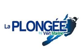 3955_image_vert_marine_pour_partenariat_bd.jpg