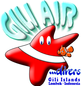 GILI AIR DIVERS - GILI MENO DIVERS