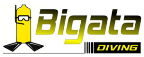 442_logo_bigata.png