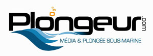 http://www.salon-de-la-plongee.com/files/5760_logo-pcom-2013-small-salon.jpg
