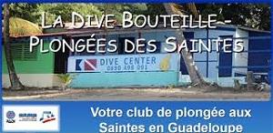 http://www.salon-de-la-plongee.com/files/7490_logdivebouteille.jpg