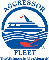 9164_afl_logo_new_nov15small1.jpg