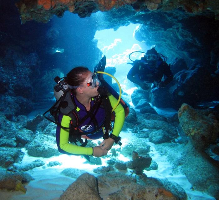 La Plongée aux Bahamas, diversité et proximité pour tous
