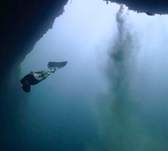 THE FREEDIVING UNIVERS