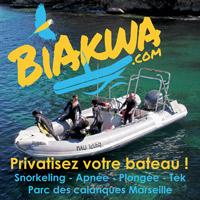 Plonger en toute intimité dans les calanques ! 2 à 6 passagers maxi !!!