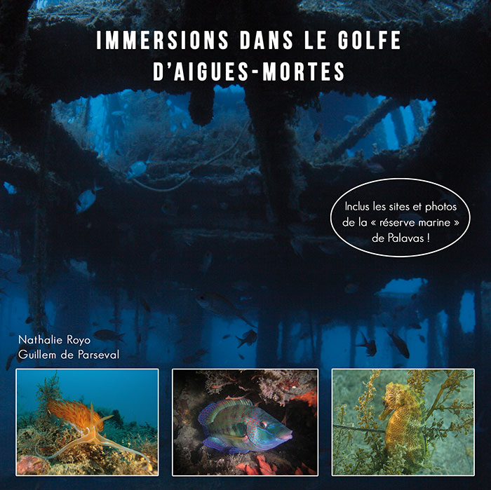 Immersion dans le golfe d'Aigues Mortes