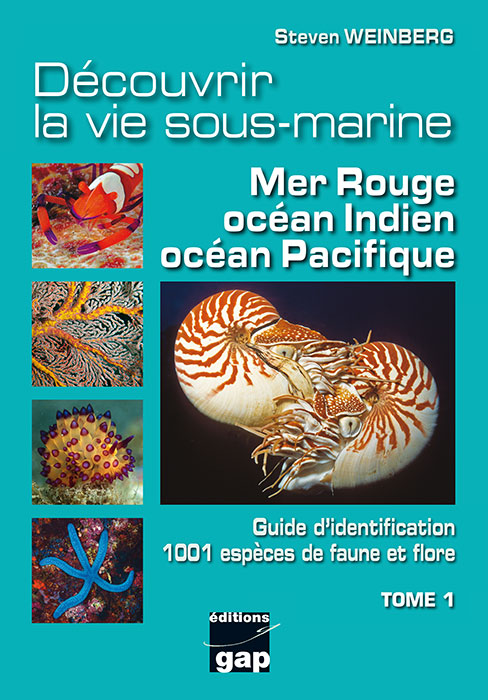 Découvrir la vie sous-marine : mer Rouge, Océan Indien, Pacifique