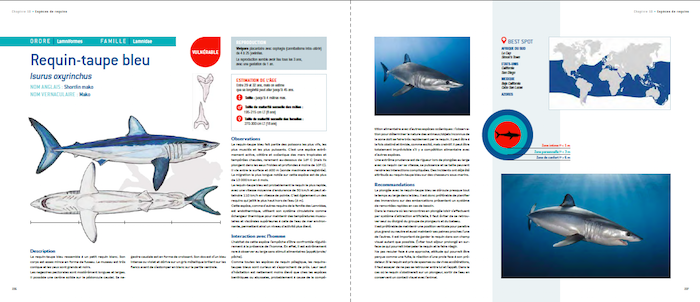 REQUIN - Guide de l'interaction