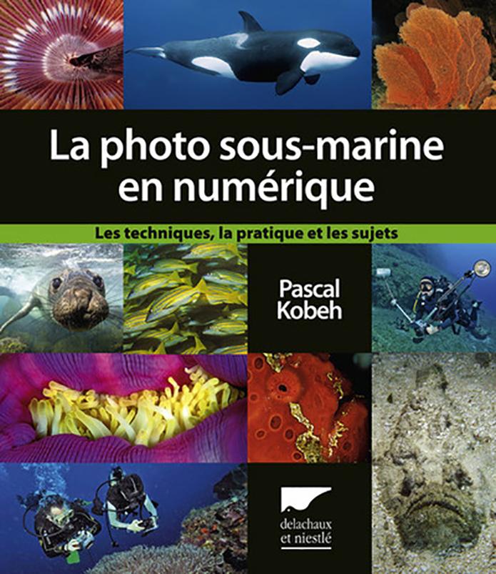 Les secrets de la photo sous-marine enfin dévoilés
