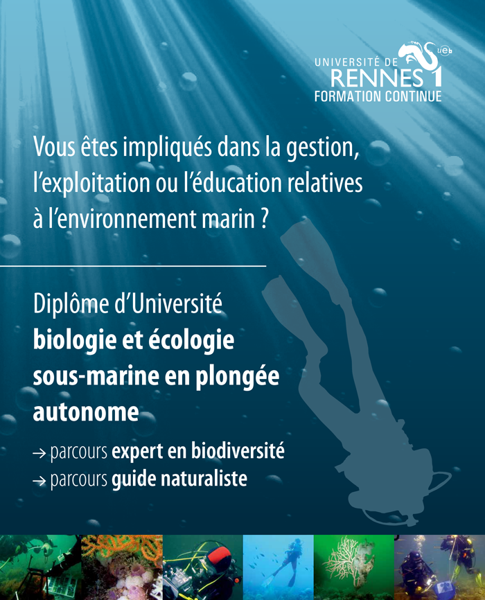 Présentation du Diplôme universitaire Biologie et Écologie sous-marine en plongée autonome