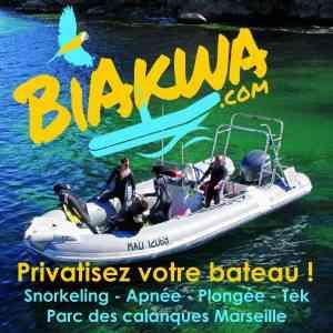 Plongée Calanques loin du monde en toute intimité 6 personnes maxi sur un bateau 20 places !