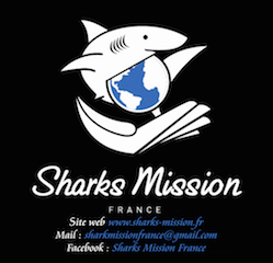 Testez vos connaissances à propos des requins et remportez un T Shirt SMF