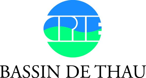 REQUINS ET RAIES DE MEDITERRANEE : DES ESPECES MECONNUES ET MENACEES