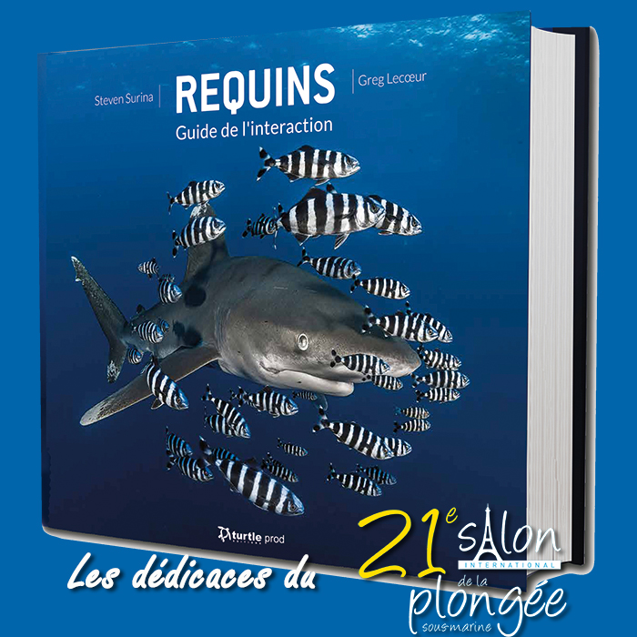 Requins - Guide du comportement