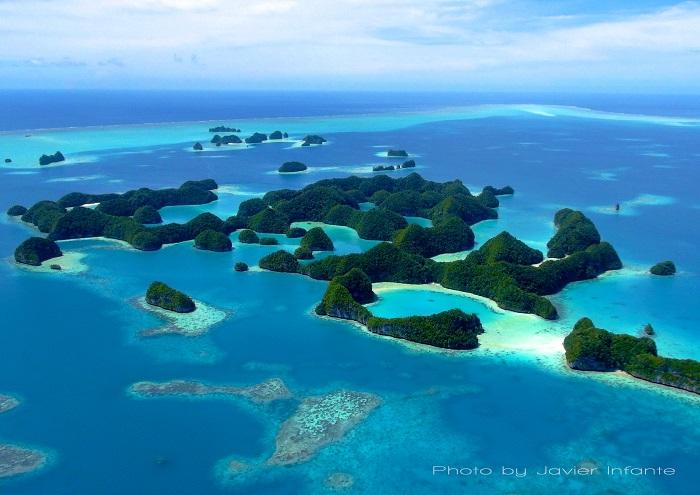 NATURE PLONGEE VOUS PRESENTE 3 DESTINATIONS D'EXCEPTION : PALAU, L'AFRIQUE DU SUD ET L'INDONESIE