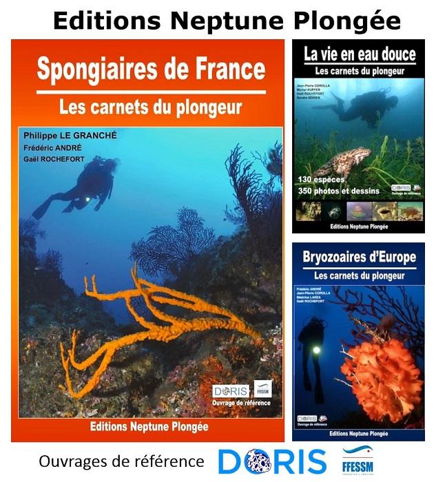 Nouveauté 2019 ! Le guide des Spongiaires de France !