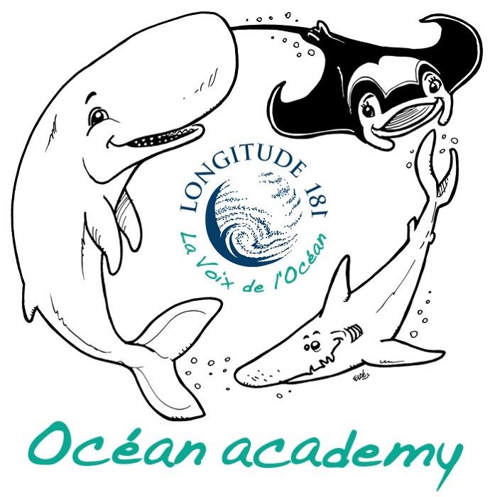 ESPACE JEUNESSE OCEAN ACADEMY DE LONGITUDE 181