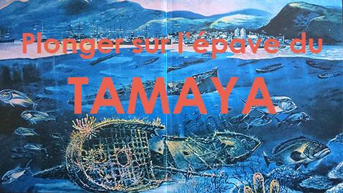 Formation Trimix Martinique par Aquadomia.com sur l'épave ...