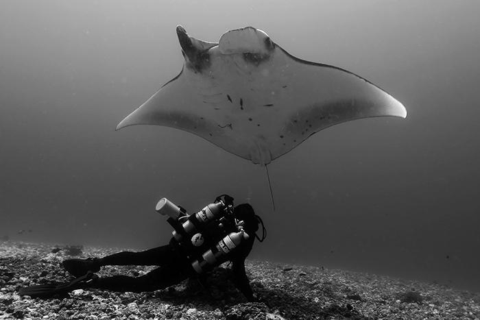 La Plongée Tek à Bali