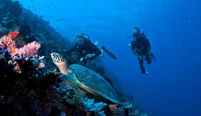 Maldives - Maafushi