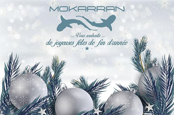 Mokarran, vous souhaite de bonnes fêtes de fin d'année ...