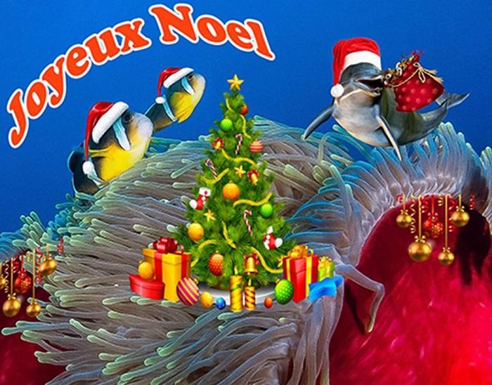 Euro Vietnam Diving - Joyeux Noël