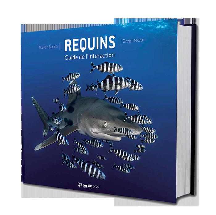 REQUINS - Guide de l'interaction