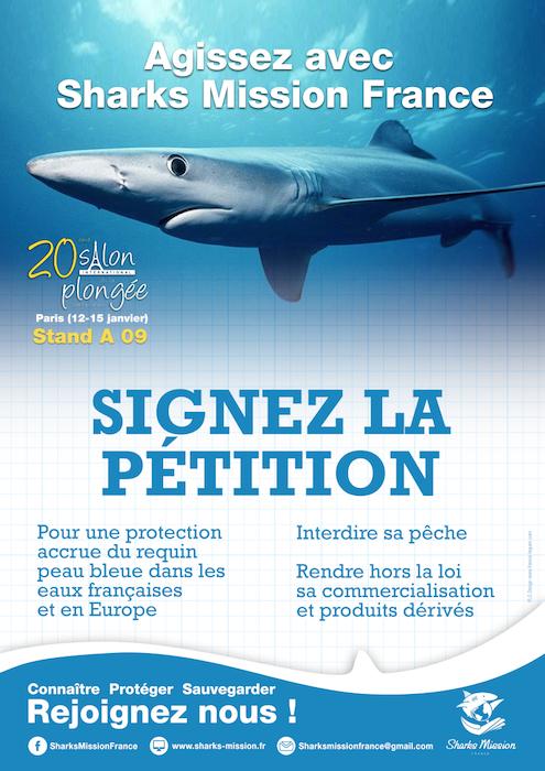 Signez la pétition pour une protection accrue du requin ...