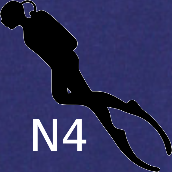 Niveau N4 chez ALPHA BELUGA Plongée Fréjus
