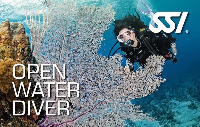Commencez votre aventure maintenant et devenez un plongeur