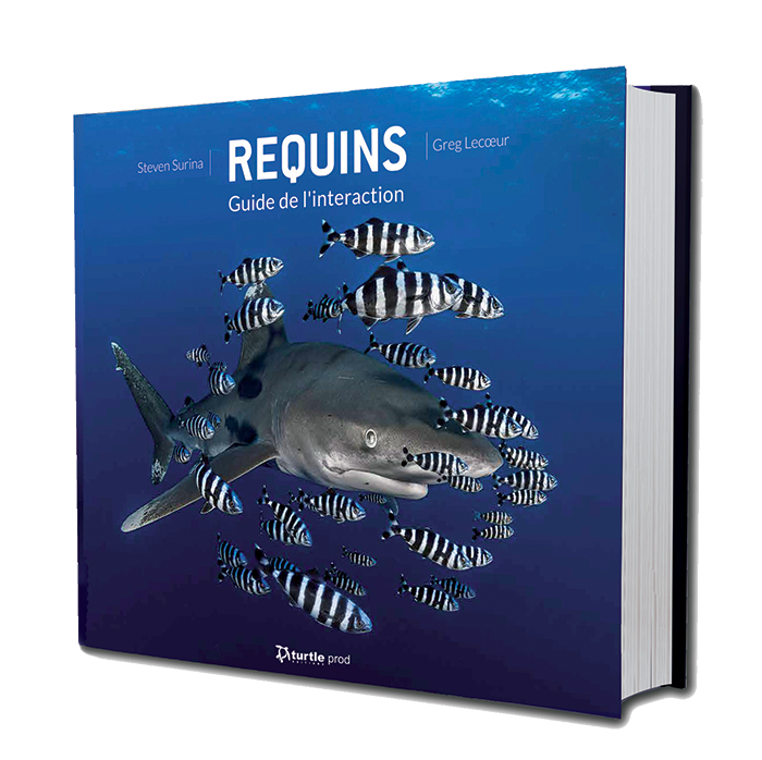 REQUINS - GUIDE DE L'INTERACTION