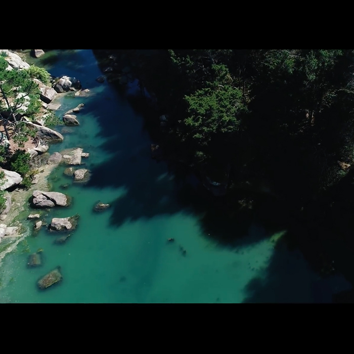 Ploumanach vue du ciel (vidéo)