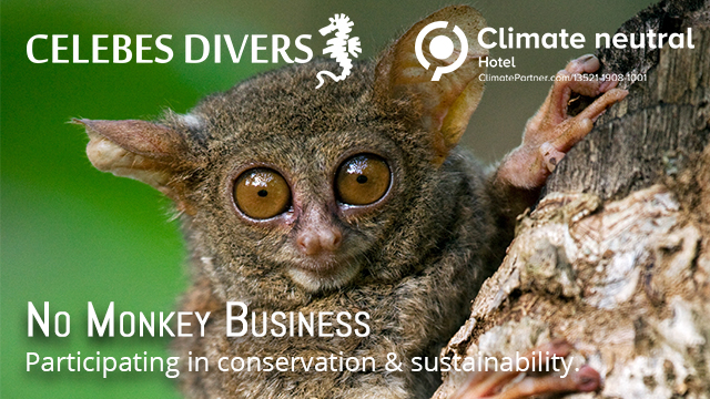 Celebes Divers Is the First Climate-Neutral Resort Operator in North Sulawesi