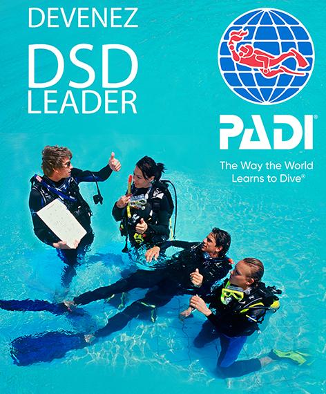 LE PADI DSD LEADER, L'INITIATEUR PROFESSIONNEL REMUNERABLE