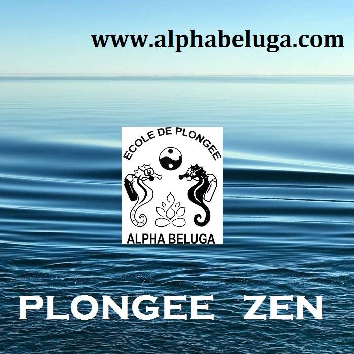 SE RESSOURCER en RELAXATION PLONGEE ALPHABELUGA