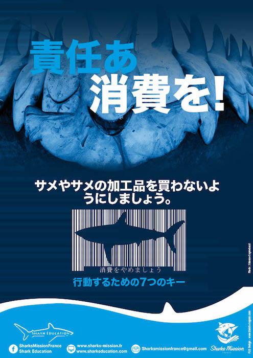 Découvrez nos brochures informatives Sharks Mission France