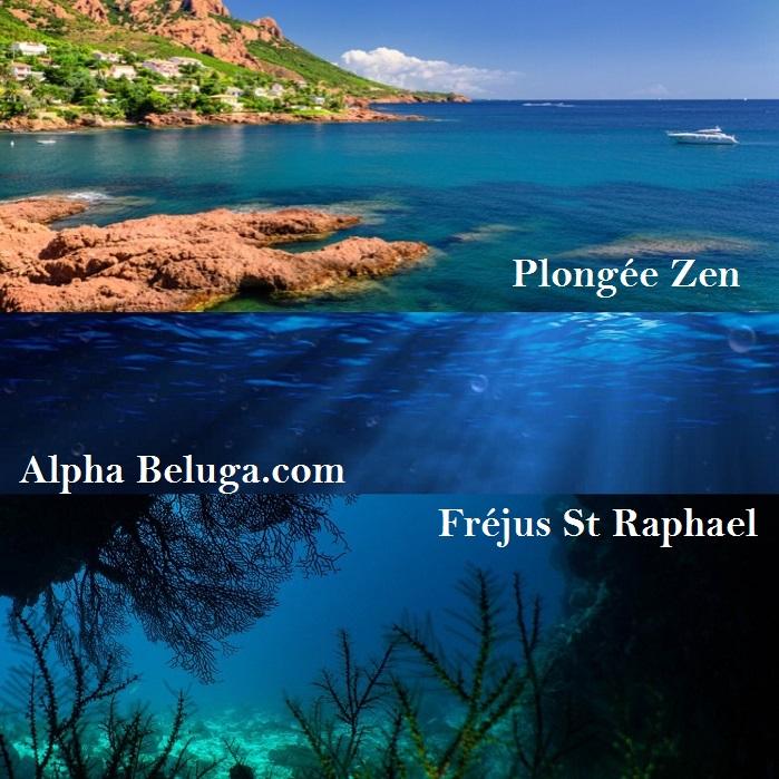 AlphaBeluga Plongée Méditerranée