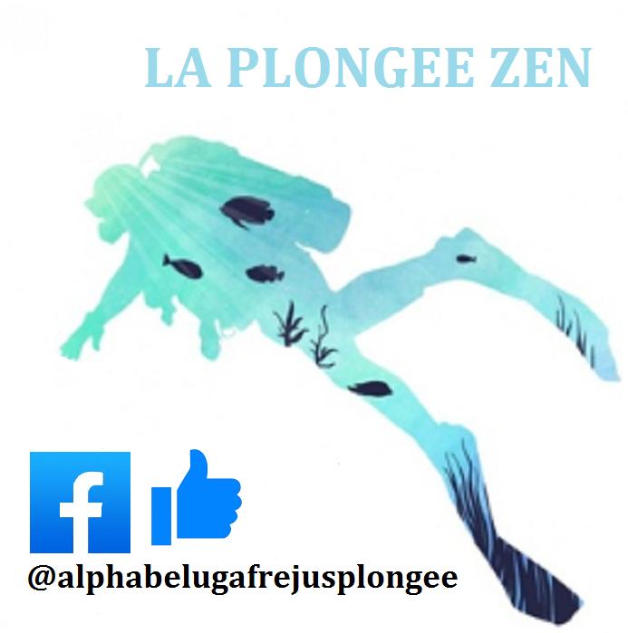Une BONNE ANNEE de PLONGEE à Fréjus avec ALPHA BELUGA