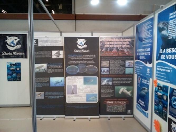 ATTENTION CHANGEMENT DE STAND SHARKS MISSION FRANCE EN  N 26 1ER ETAGE