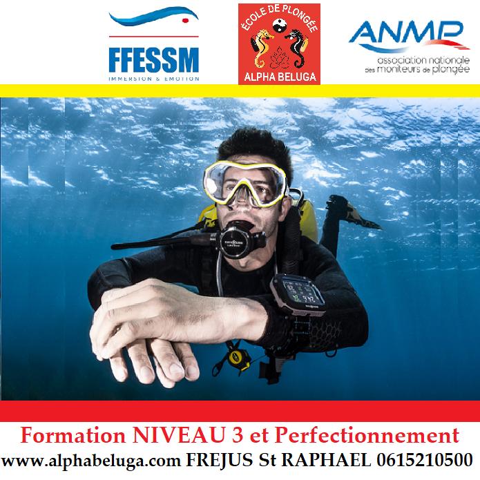 Niveau 3 plongee sous-marine FFESSM ANMP - Fréjus St ...