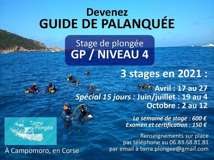 Stage et examen Guide de palanquée / niveau 4