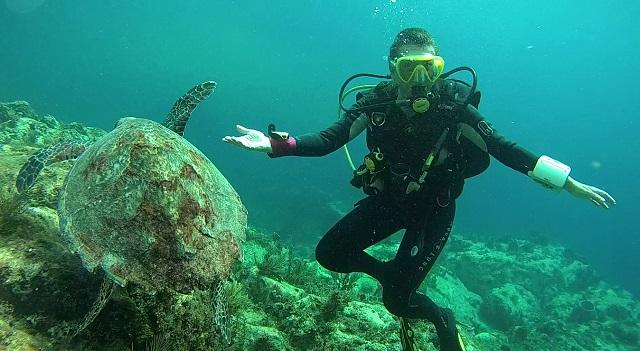 ABC Dive : Venez plongez en Martinique !
