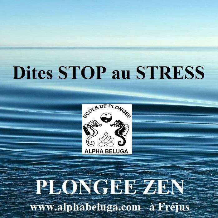 Stressé, Surmené, Confiné? RELAXEZ VOUS EN PLONGEE