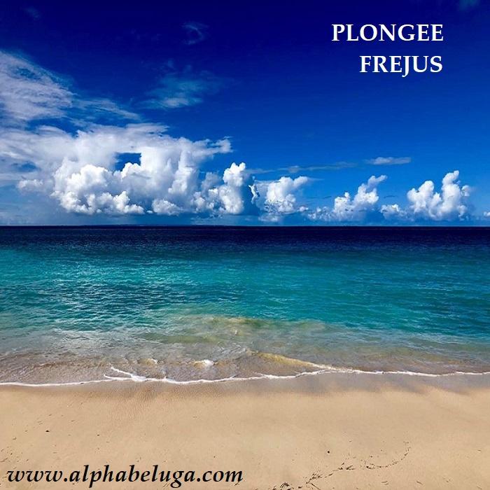 BULLES de RÊVES: mer, soleil, palmiers : de vraies VACANCES