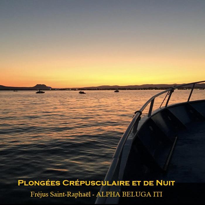 Plongée Crépusculaire ou de Nuit en Méditerranée