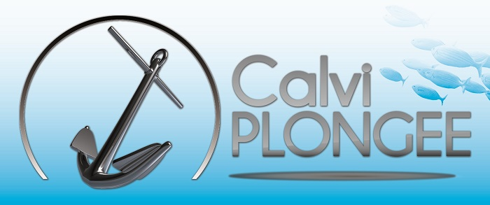 CALVI PLONGEE